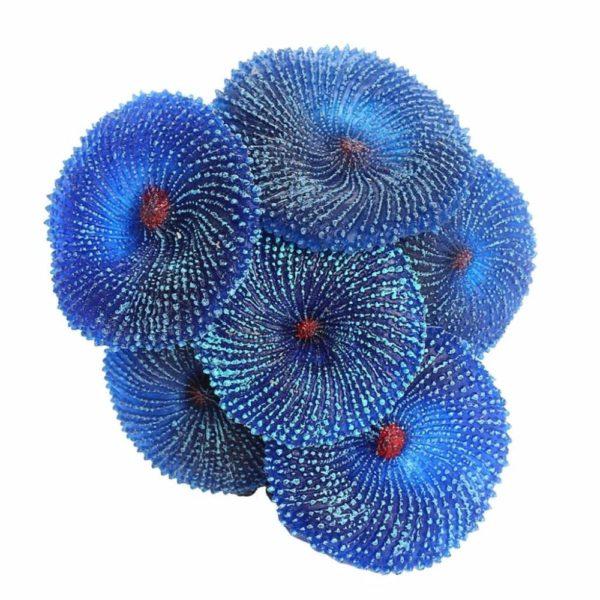 6 coraux en couleur aquarium