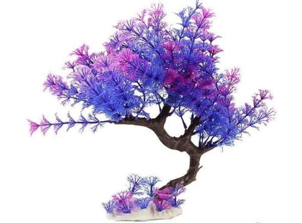 Arbre violet aquarium