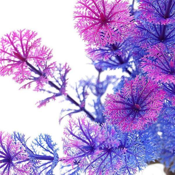 Arbre violet aquarium aquariophiles