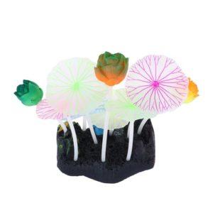 Assortiment de fleurs aquarium