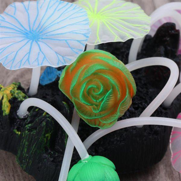 Assortiment de fleurs aquarium pas cher