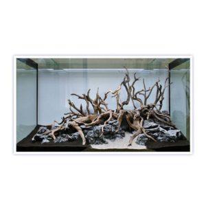 Bois naturel décoratif d'aquarium
