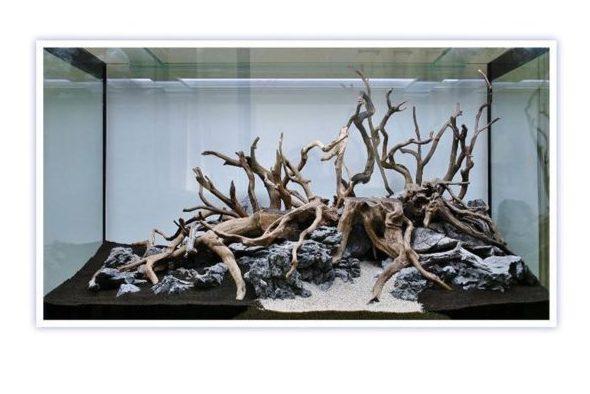 bois naturel décoratif