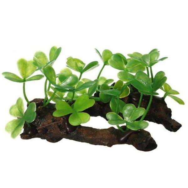 Branche d'arbre avec feuilles pour aquarium