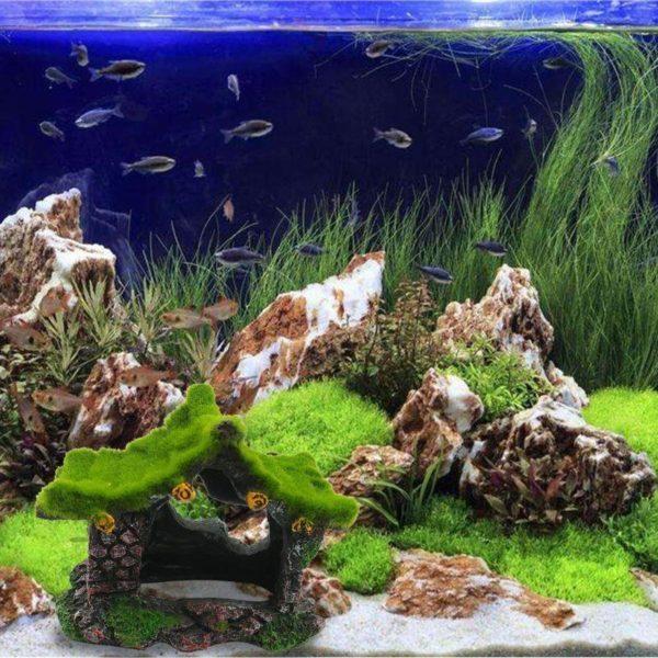 Cabane au toit de mousse pour aquarium
