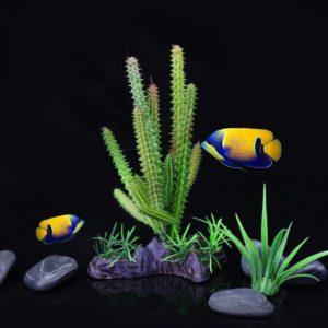 Cactus deco aquarium
