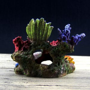 Coraux Variés deco aquarium