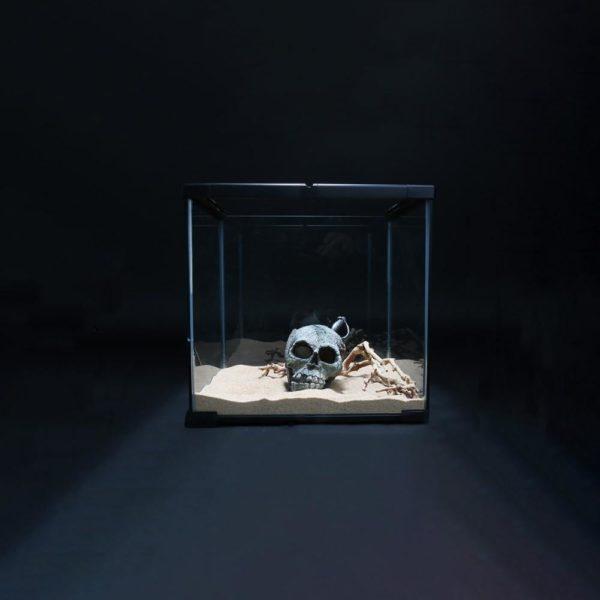 Crâne de Pirate décoration aquarium