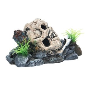 Crâne sur Rocher decoration aquarium