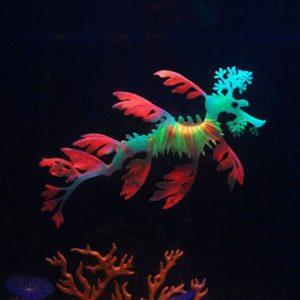 Faux hippocampe Lumineux decoration aquarium