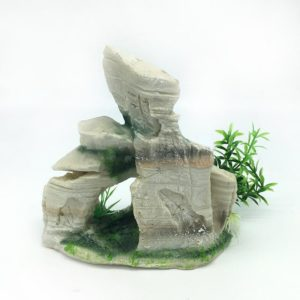 Grand rocher avec plantes déco