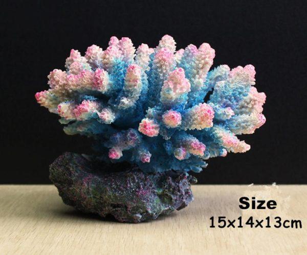 Grands coraux colorés aquarium pas cher