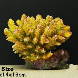 Grands coraux colorés aquarium pour poissons