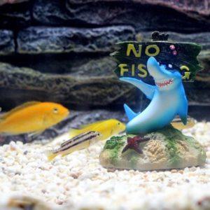 Humour Panneau No Fishing decorations aquarium