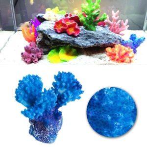 Mini-récif de corail aquarium
