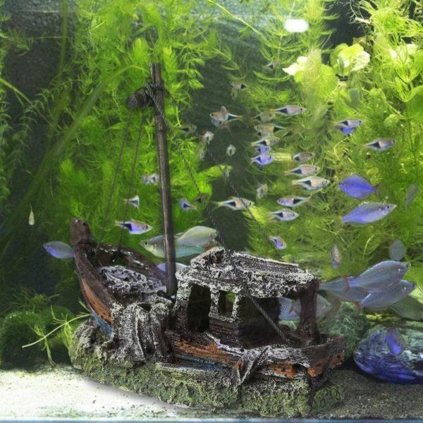 Petite épave de bateau de pêche d'aquarium