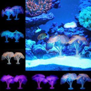 Plantes Aquatiques Fluorescentes pas cher