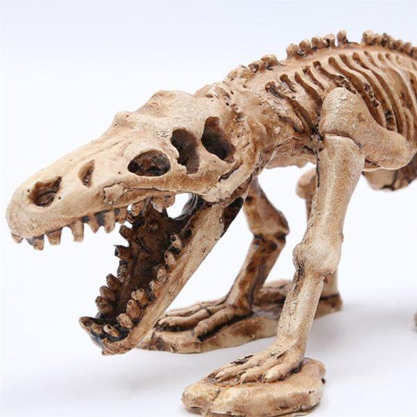 Squelette de Reptile déco aquaarium