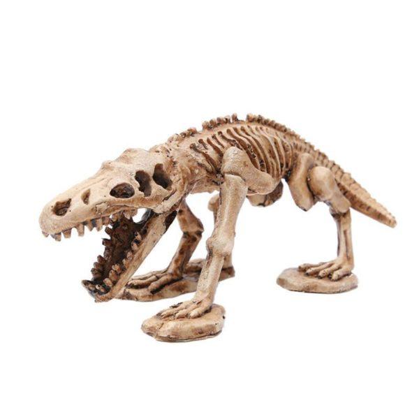 Squelette de Reptile decoration aquarium