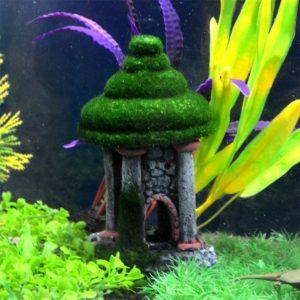 Tour au toit en mousse dans aquarium
