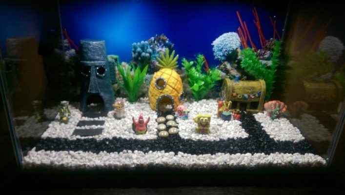 blog décoration film aquarium bob l'éponge