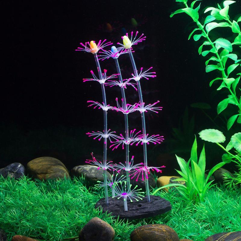 decoration aquarium plante