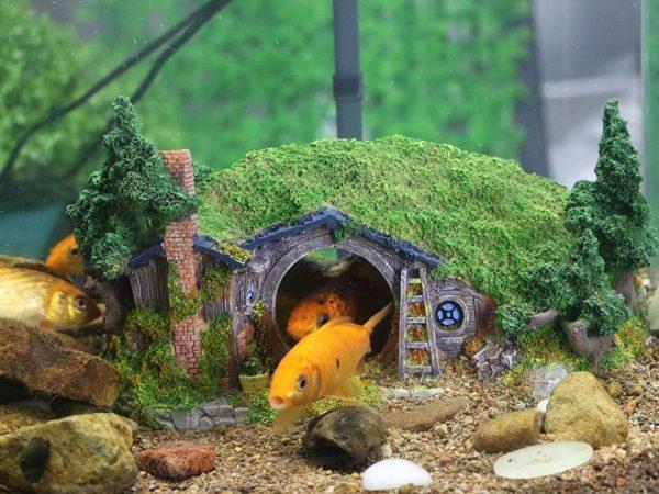 maison hobbit aquarium poissons