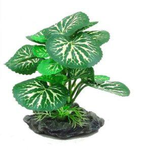 plantes vertes réalistes aquarium
