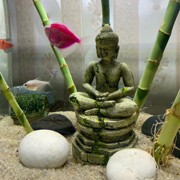 statue aquarium avis