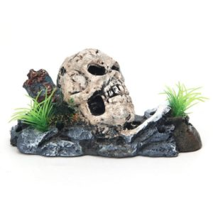 tete de mort aquascaping decoration