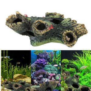 Tronc d'arbre troué aquarium