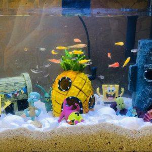 déco bob l'éponge aquarium