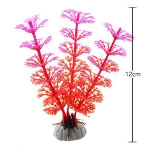 Plante Aquatique Bicolore decoration aquarium