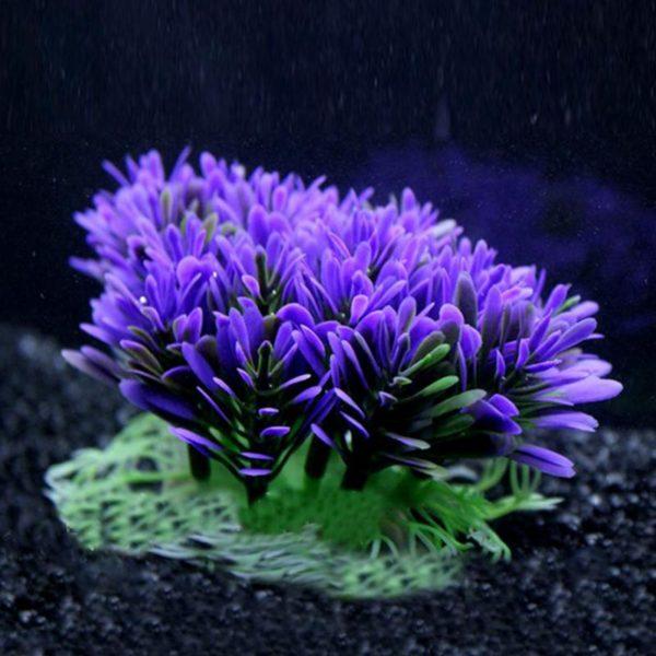 Buisson Plante Aquatique deco aquarium