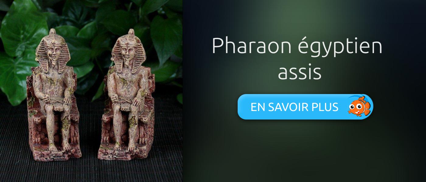 décoration aquarium statue pharaon égyptien