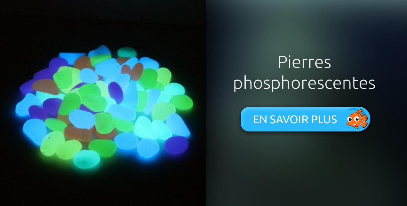 décoration aquarium pierres phosphorescentes