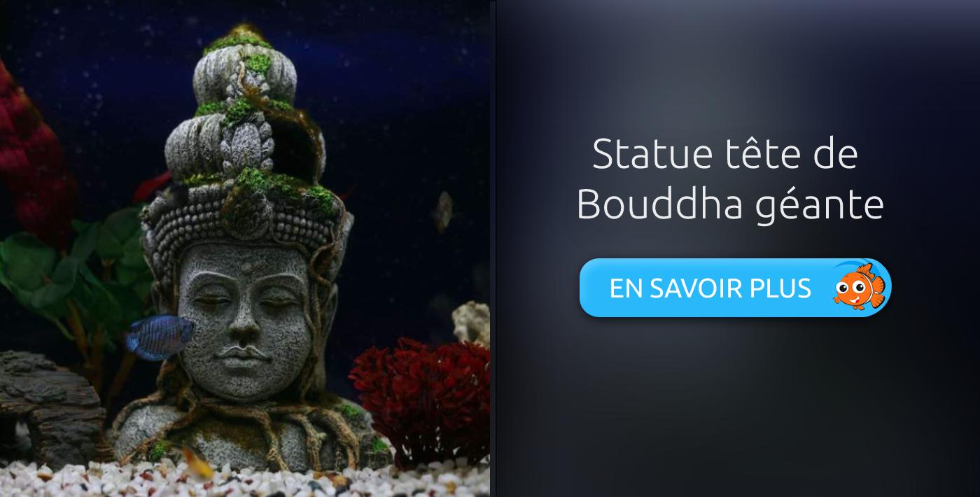 décoration aquarium bouddha géant