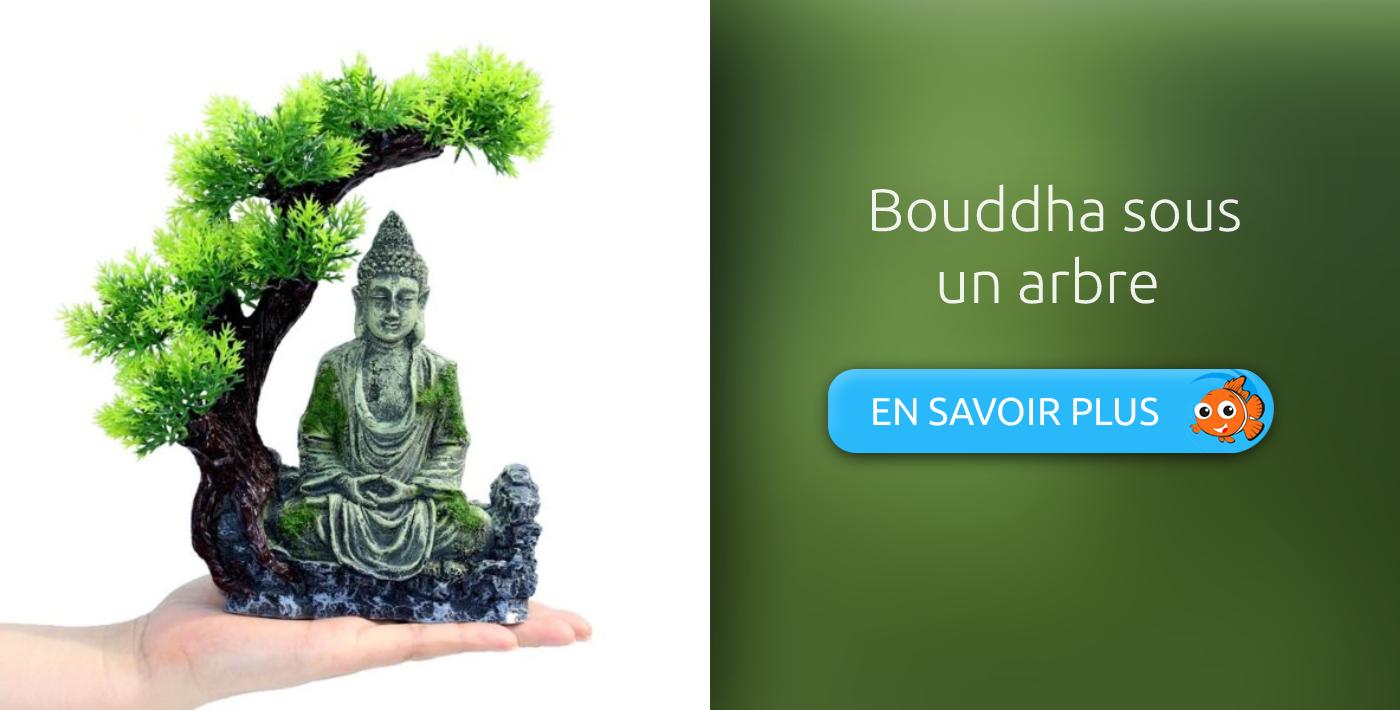 décoration aquarium bouddha sous un arbre