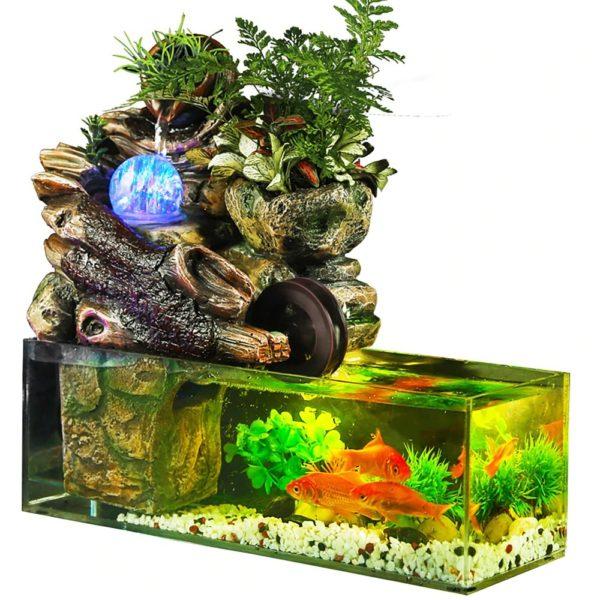 Aquarium Design pour Poisson Rouge