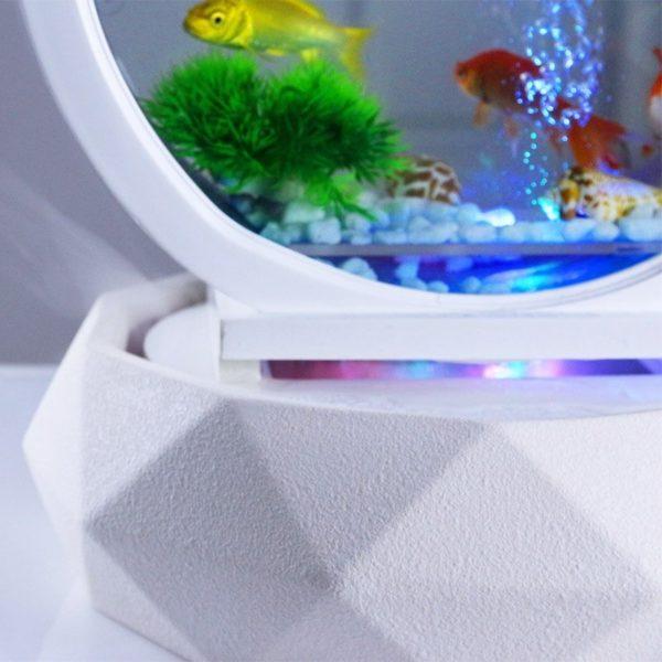 aquarium design sans entretien pas cher