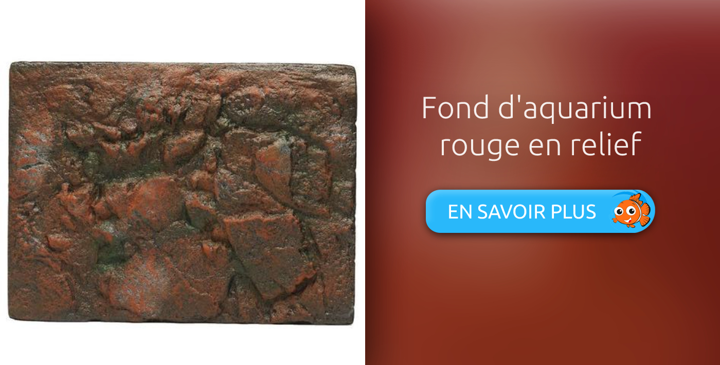 fond d'aquarium rouge en relief