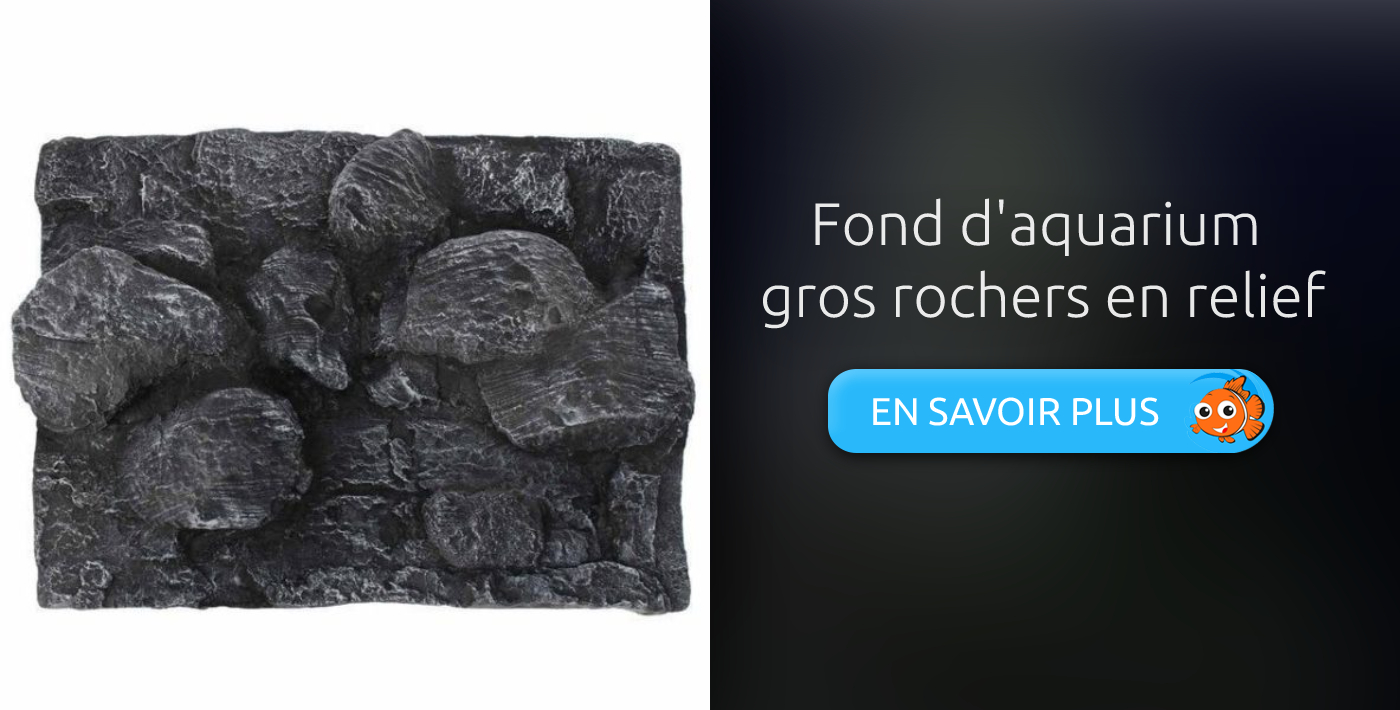 Fond d'aquarium gros rochers en relief